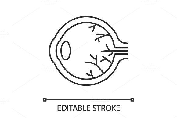 Eye Anatomy Linear Icon