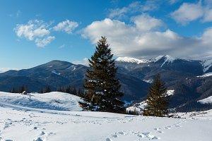 Winter Carpathian mountains, Ukraine