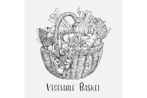 Sketch of tomato and corn, broccoli in basket
