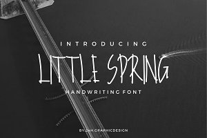 Little Spring Handwriting Font