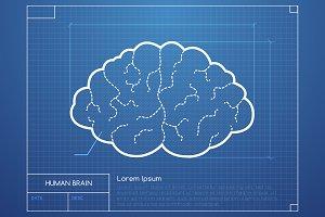 Brain Bluepring