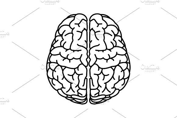 Brain Line Icon Vector Illustration