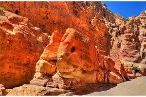 The Elephant Shaped Rock at Petra