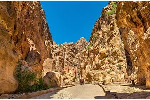 Road inside the Siq Canyon at Petra