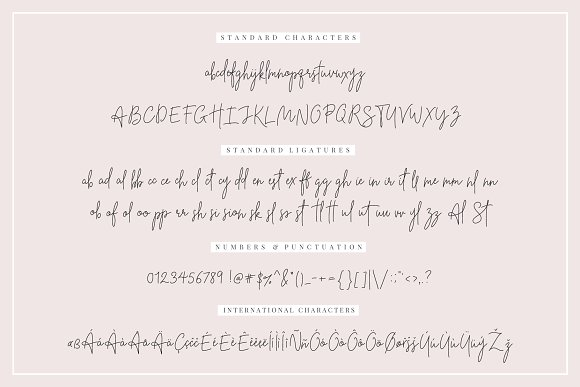 Beauty Notes Script + Illustrations in Script Fonts - product preview 1
