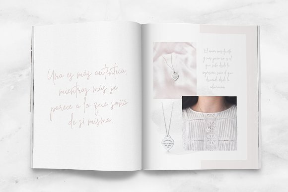 Beauty Notes Script + Illustrations in Script Fonts - product preview 13
