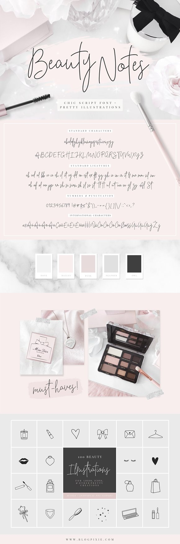 Beauty Notes Script + Illustrations in Script Fonts - product preview 14