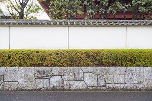 Wall tree fence wall