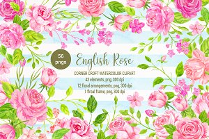 Watercolor English Rose Collection
