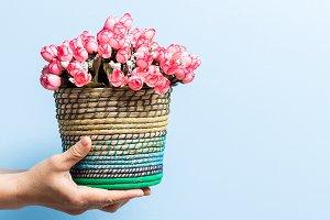 Flower basket in hand