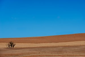 Agricultural ploughed field. Rural landscape