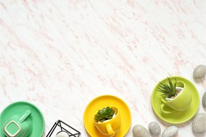 Flat lay of creative colored marble desk with green cup, stones and succulents background