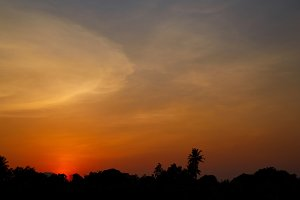 Silhouette nature and sunset background