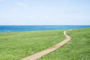 Field, path, sea and sky