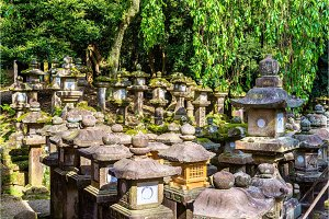Stone lanterns at Tamukeyama Hachimangu Shrine in Nara
