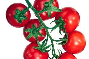 Regina tomatoes