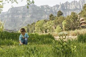 Little kid picking flowers