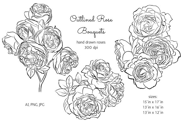 Outlined Rose Bouquets