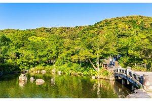Maruyama Park in Kyoto, Japan