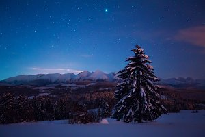 Night landscape with starry sky