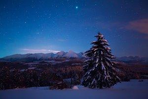 Night landscape with starry sky