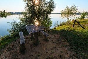 Summer rushy lake scene