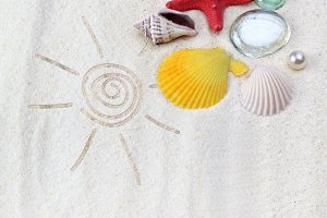 sand background with sea shell