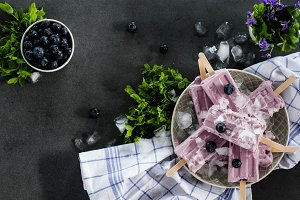 Blueberry ice cream popsicles VI