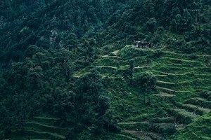 Dhanaulti Hills