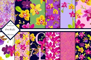 Orchid Floral Patterns / Papers