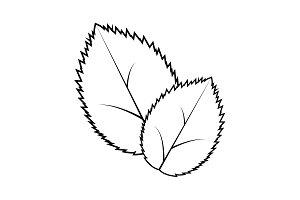 Leaf line icon, vector illustration.