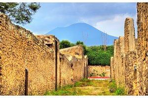 Ruins of Pompeii with Mount Vesuvius in the background
