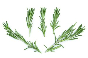 Fresh green rosemary isolated on a white background. Top view. Flat lay