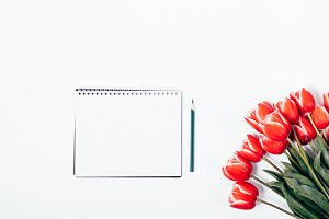 Bouquet of red tulips and a notebook