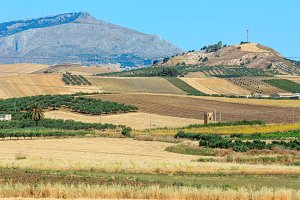 Summer Sicily fields, Italy