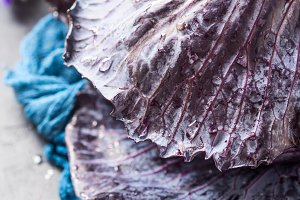 Purple cabbage with water drops
