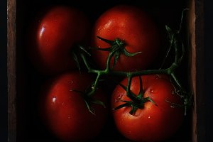 Moody tomatoes in a Box