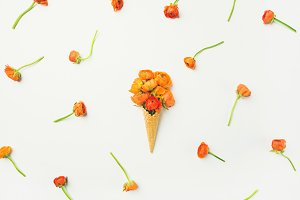Waffle cone with orange buttercup flowers over white background, flat-lay