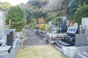 Cemetery in the garden