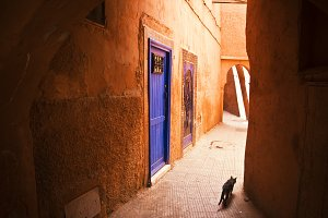 Alley in the medina of Marrakesh