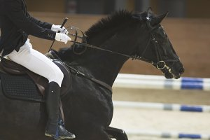 Young rider sitting on black horse at the show jumping competition