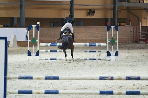 Young female rider on sorrel stallion jumping over hurdle on show jumping competition