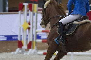 Young equestrian rider running on bay horse at show jumping competition