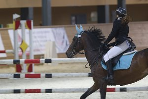 Female equestrian rider running on stallion at show jumping competition