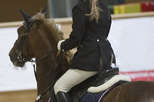 Rear view of female equestrian rider running on stallion at show jumping competition