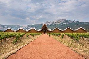 Modern winery of Ysios
