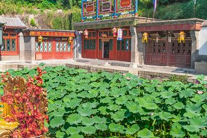 Lotus pond in the Summer Palace
