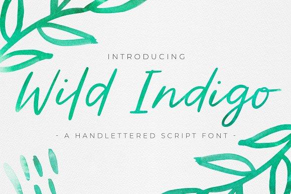 Wild Indigo Script Font