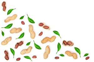 Peanuts with leaves isolated on white background with copy space for your text, top view. Flat lay pattern