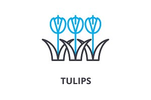tulips flowers thin line icon, sign, symbol, illustation, linear concept, vector